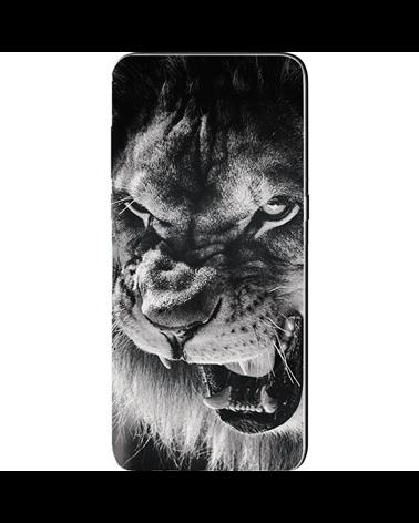 Sguardo del Leone - Cover Collezione -