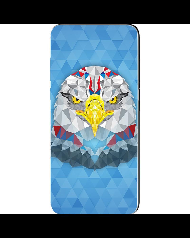 Aquila Geometrica - Cover Collezione -
