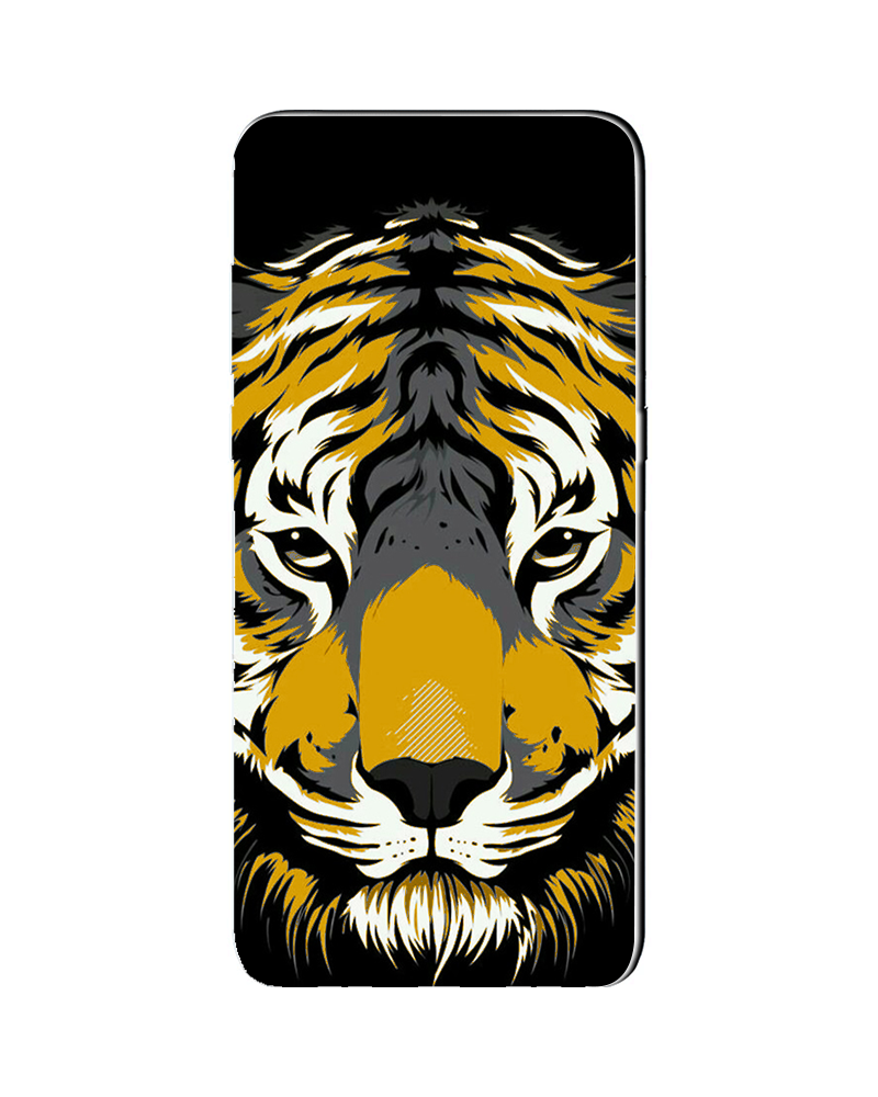 Volto Tigre Dorata - Cover Collezione -