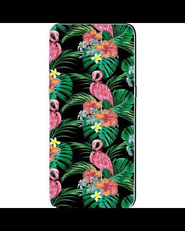 Fenicotteri Tropicali - Cover Collezione -