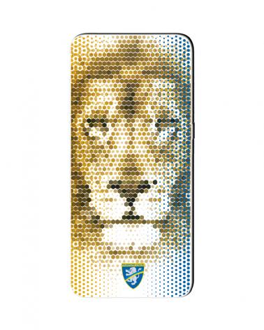 Frosinone Lion Theme - Cover Collezione -